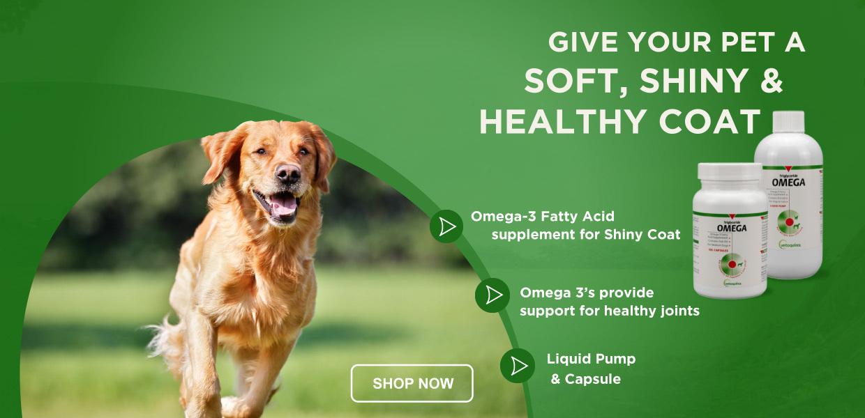 Shop Triglyceride Omega